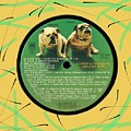 Captain And Tennille Greatest Hits Lp Label by Doug Siegel