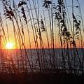 Captiva Sunset by Mark Mickelsen