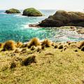 Captivating Coastal Cliff by Jorgo Photography - Wall Art Gallery