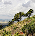 Capulin Volcano View Panorama New Mexico by Lawrence S Richardson Jr