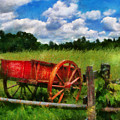 Car - Wagon - The Old Wagon Cart by Mike Savad