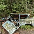 Car Graveyard In Smaland by Antony McAulay