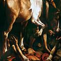 Caravaggio: St. Paul by Granger