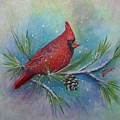 Cardinal And Delta Snow by Sheri Hubbard