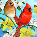 Cardinal Day by JQ Licensing