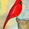 Cardinal by Marita McVeigh