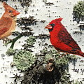 Cardinal Pair II by Philip Hall