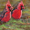 Cardinal Two by Tracey Hunnewell