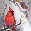 Cardinals by Gail Vass