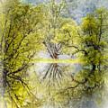 Caress In The Mist by Debra and Dave Vanderlaan