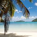 Caribbean Afternoon by Greg Wyatt