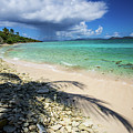 Caribbean Afternoon by Rob Lantz