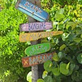 Caribbean Crossroads by Celeste Drewien