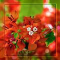 Caribbean Floral Surprise by Kasia Bitner