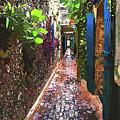 Caribbean Island Secret Alley by Susan Molnar