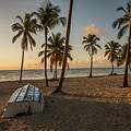 Caribbean Life by Todd Carriveau
