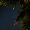 Caribbean Nights Anse Chastanet by Toby McGuire