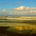 Caribbean Seascape by Galeria Trompiz