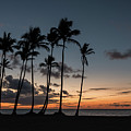 Caribbean Sunrise by Todd Carriveau