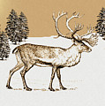 Caribou by Madeline  Allen - SmudgeArt