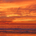 Carlsbad Beach by Jean Booth