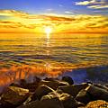 Carlsbad Sunset by Daniel  Knighton