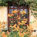 Carmel Mission Window by Carol Groenen