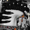 Carnival by Jenny Revitz Soper