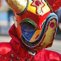 Carnival Red Duck Portrait by Heather Kirk