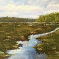 Carolina Creek And Marsh by Rosie Phillips