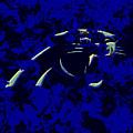 Carolina Panthers 1c by Brian Reaves