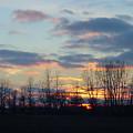 Carolina Sunset by Suzanne Gaff