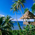 Caroline Islands, Pohnpei by Joe Carini - Printscapes