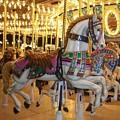 Carosel Horse by Anita Burgermeister