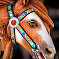 Carousal Horse by Don Johnson