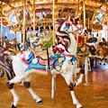 Carousel Dreams by Garland Johnson