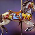 Carousel Dreams IIi by Garland Johnson