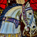Carousel Horse - 7 by Paul Ward