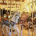 Carousel Horse 2 by Anita Burgermeister