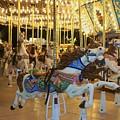 Carousel Horse 3 by Anita Burgermeister