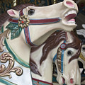 Carousel Horse by Donna Walsh