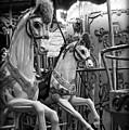 Carousel Horses No. 1 by Tammy Wetzel