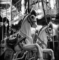 Carousel Horses No.2 by Tammy Wetzel