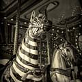 Carousel Zebra by Caitlyn Grasso