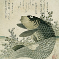 Carp Among Pond Plants by Ryuryukyo Shinsai