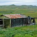 Carrizo Plain Ranch by Kyle Hanson