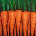 Carrots by Cami Lee