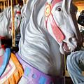 Carrousel 25 by Joyce StJames