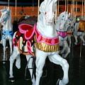 Carrousel 32 by Joyce StJames