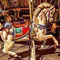 Carrousel Horse Ride by Garry Gay